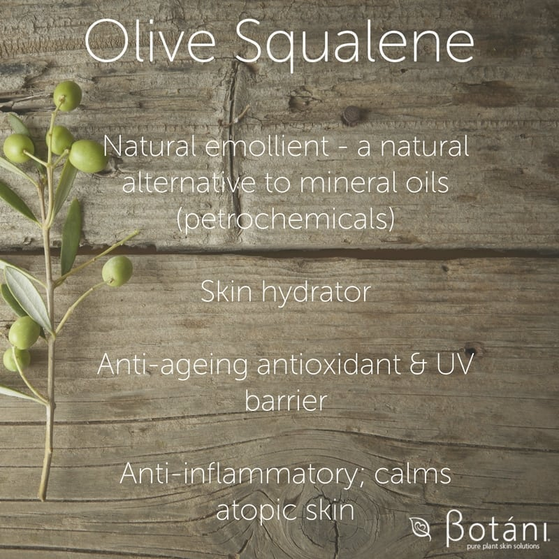 Natural emollient - a natural alternative to mineral oils (petrochemicals). Skin hydrator Anti-ageing antioxidant & UV barrier Anti-inflammatory